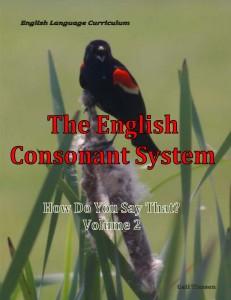 The English Consonant System